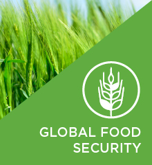 Global Food Security header